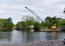 Cains Pond Restoration